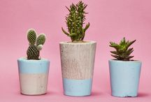 Hi Cacti Portfolio / Hi Cacti is a Cactus Concept Shop part south by southwestern home decor part botanical boutique that maker Sabina began in late 2015. Her studio is in Brighton, Hometown is Austin, TX, & Spirit Animal Mexico. Hi Cacti's main product are handmade concrete cactus pots that are inspired by Mexican aesthetic & art. Pots & packaging are designed to post paired with a cacti or succulent as an easy to care for, creative alternative to sending flowers. Best Start-Up Business Award Best New Product Award