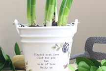 Personalised Small Ceramic Plant Pots