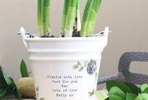 Personalised Small Ceramic Plant Pots