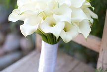 Calla,green-white wedding
