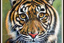 animals / I,m gonna try to draw this animals. This you see in My bord My own picture