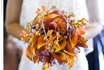 Wedding :: Coral & Turquoise Modern