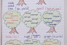 Vocabulary & Stems
