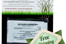 Better Lawns & Gardens / You can have a yard and garden that will be the envy of the neighborhood. Click here: http://rollingtstores.com/weed-fungus-control/