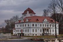 Olszyna Dolna - Pałac