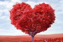 hearts / Hearts