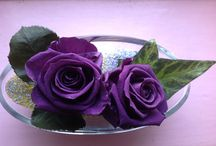 Rose Eternelle / La rose éternelle se conserve plusieurs année, elle est issue d'une rose naturelle dont la sève a été remplacé par un produit de conservation naturel tel que la glycérine