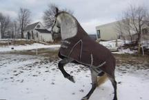My Horse, Bolero