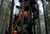 Tree Houses. I need one!