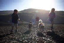 Kids and dog holiday