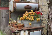 garden n flowers