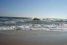 Jersey Shore / by Beach.com