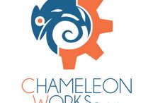 Company / Images about the company Chameleon Works Pty Ltd