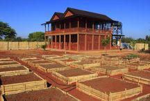 Pindaya Farm House