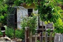 Old Forest School...cabin gardens