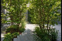 """Gardensdesign """"Pur Sang"""""""