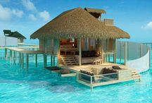 Places I want to go xx