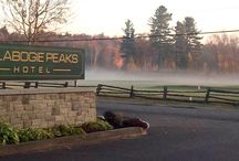 Morning Fog / A collection of photos as the fog creeps in...