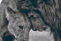 Lion/Zelda Tattoo