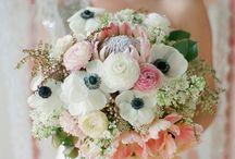 Wedding Bits / by Emily Turgeon