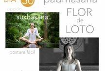 50 días 50 poses de Yoga