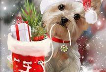 собака новый год