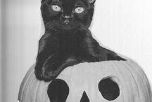 Spooky Scary Skeleton [mood board]