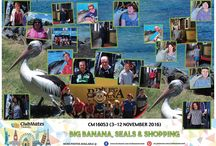 CM16053 Big Banana, Seals & Shopping