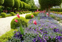 Evenstar Garden