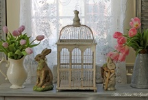 BIRDCAGES / by Tracey Eggers