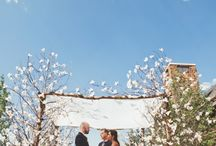 Wedding - chuppah / Chuppah idea zone.