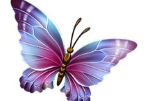 motyle i ważki