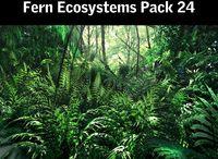 Forest RainForest trees Vines Magica Rain  Mangrove Jungle tree  3d park avatar  garden