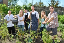 Our Team / L-eat Catering Team cultivating our garden. These vegetables and herbs are then used to create some of our stunning dishes!