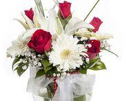 Eskişehir çiçek siparişi / Eskişehir çiçek siparişi vermek isterseniz ,mutlaka sitemizi ziyaret edin. http://www.cicekvitrini.com/cicekler/eskisehir-cicek-siparisi