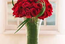 Ethiopian Roses / These breathtaking imported roses are world renowned for their large diameter, depth and floral scent. This roses will bring pleasure to the beholder for days to come