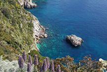 natura / Capri