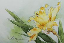 Daffodil Inspiration