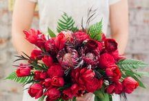 Bouquets  / by Christine Napoleoni