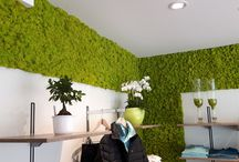 Moss Wall Design / Vertical moos walls as an alternative to walls with plants and flowers. Custom made with different types of moss. Project photos of walls with moss