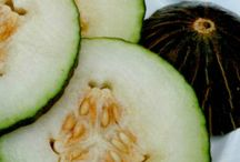 """Piel de Sapo / Delicious, and widely available Piel de Sapo melons can best be described as fresh, sweet, tasty and crisp. Very popular in Spain these are fairly new on the scene in Australia.  And - it's true - Piel de Sapo means """"Toad skin"""""""