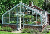 Üvegházak / Hol tároljuk télen a növényeket