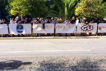 32nd Athens Classic Marathon 2014