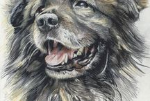 Tierportraits / Pet portraits / Farbstift-Zeichnungen und Öl-Malerei / Colored pencil drawings and oil paintings by Jutta Baur