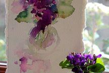 violette ecc