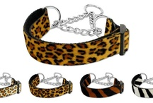 Martingale Dog Collars / The martingale collar was designed for dogs whose necks are larger than their heads (like greyhounds and whippets); but have gained popularity with other breed owners who prefer the gentle control of a martingale dog collar over a choke chain and owners of dogs who try to back out of their traditional buckle collars.