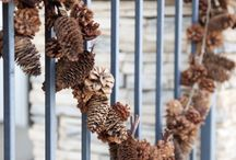 шишки / разные поделки из шишек хвойных деревьев
