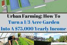 farming at home
