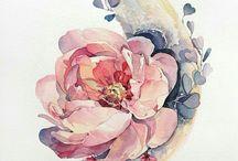 botanical illustration flowers