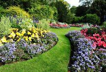 J A R D I N  - F L O W E R S / kwiaty -i ogrody - aranzacje